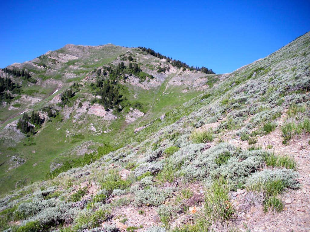 In route to Kelsey Peak