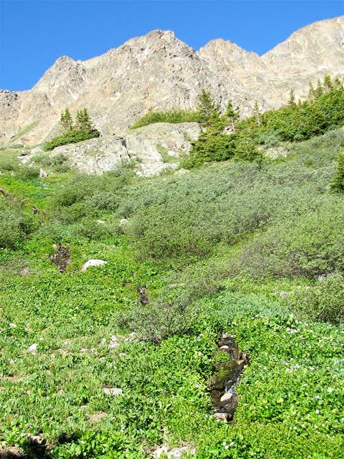 Part of the ridgeline between Tellurium & Tabor Peaks