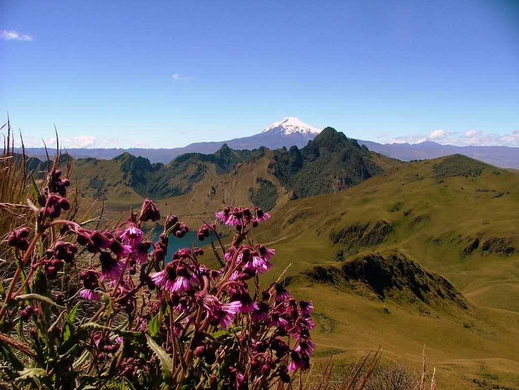Cerro Negro.