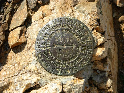 White Mountain Summit Benchmark