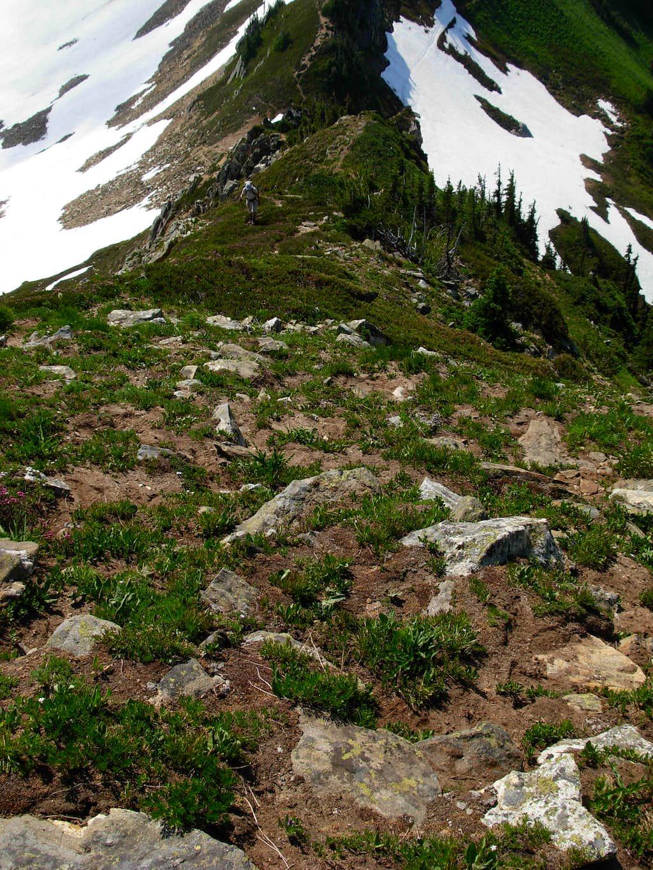 South Ridge Of Portal Peak