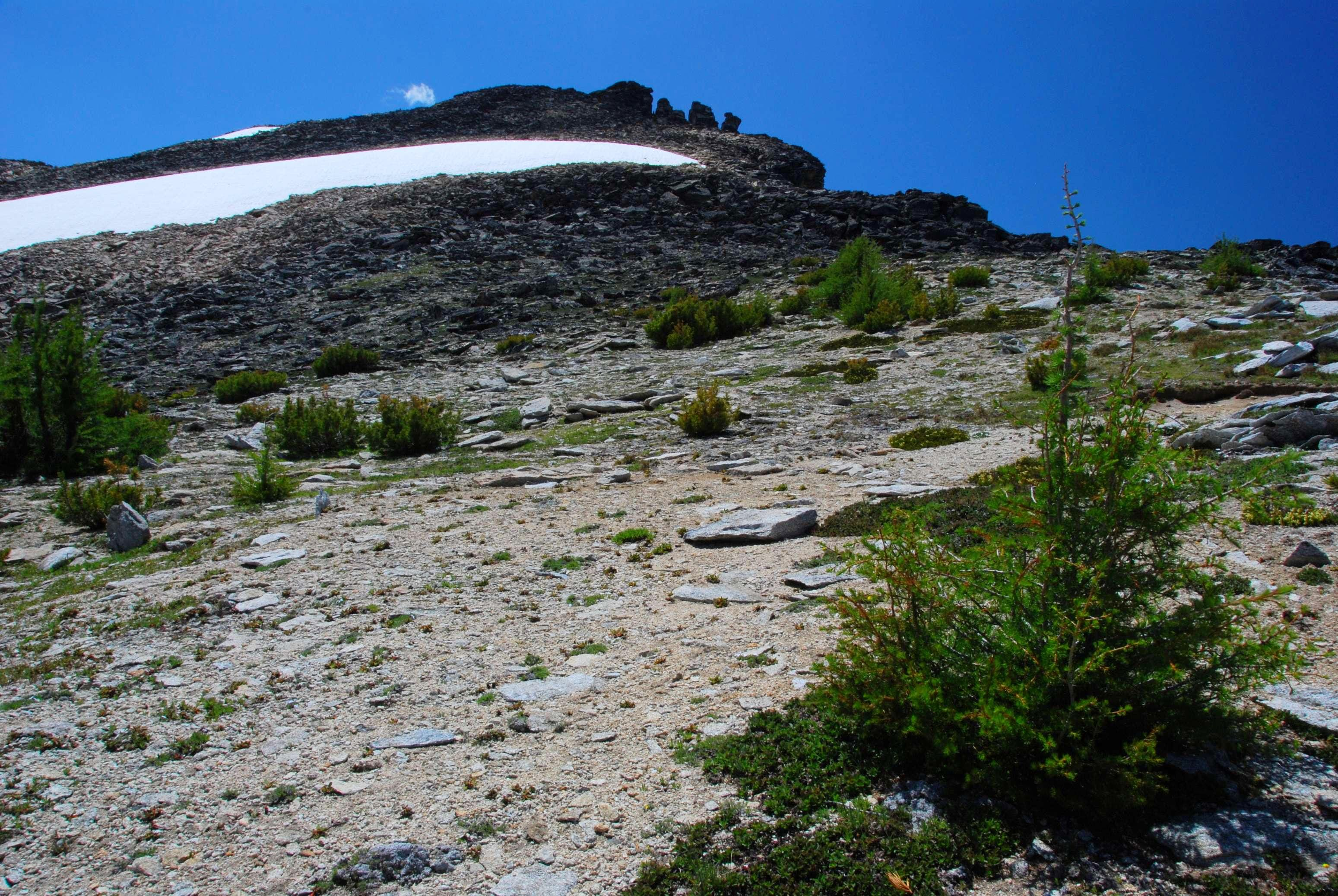 Point 9617 - Little Tin Cup Peak