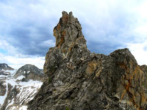 Merritt Peak Goat