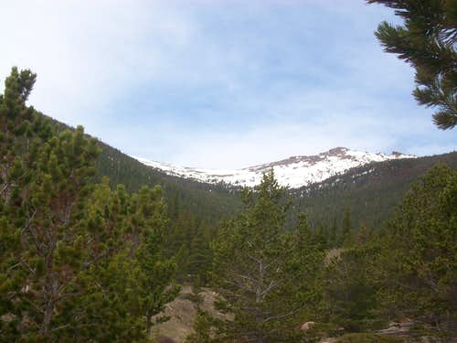 Timberline Pass from Ute Meadows
