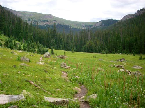 Tonahutu Meadows