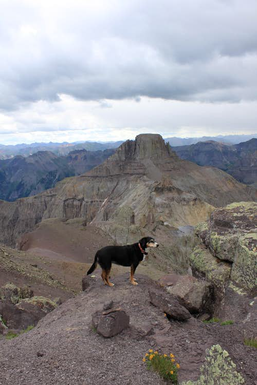 Duchess and Potosi Peak