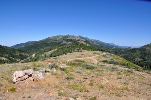Francis Peak from trailhead