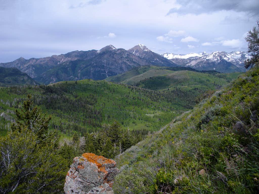 North to Box Elder Peak
