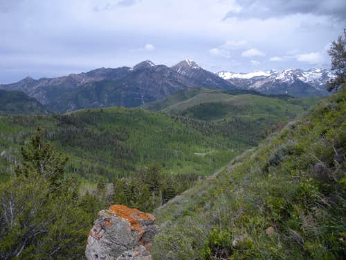 North to Box Elder Peak