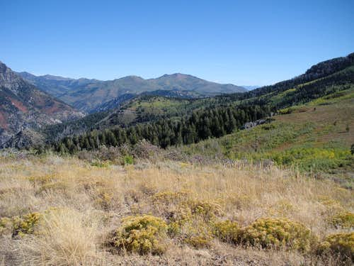 Mill Canyon Peak
