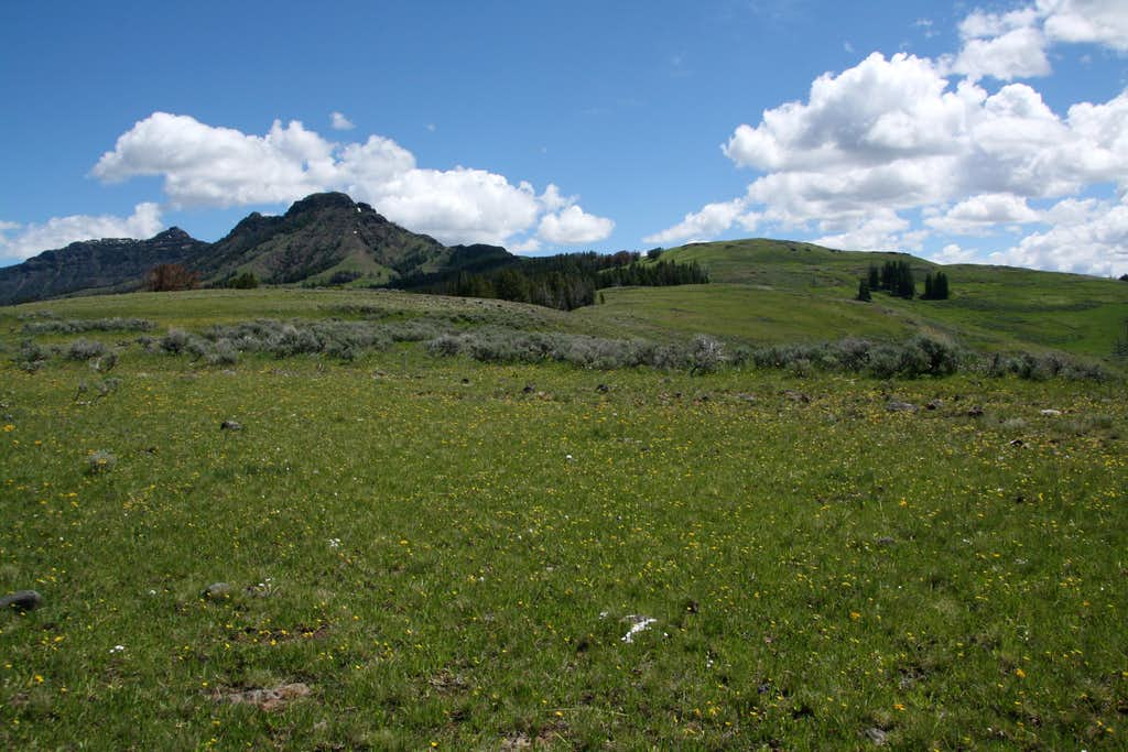 Meadows and Mount Norris