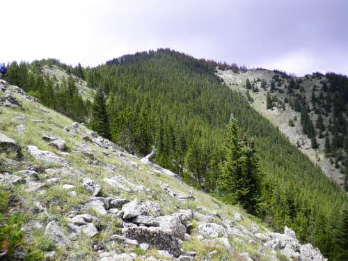 North ridge of Mount Zwischen