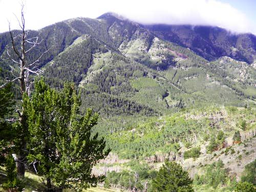 Mount Zwischen