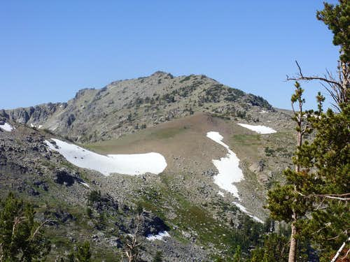 View of Peak 9795 and the ridge connecting it to Fourth of July Peak