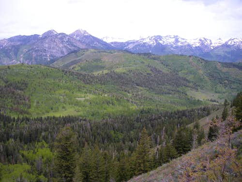 Pine Hollow Peak