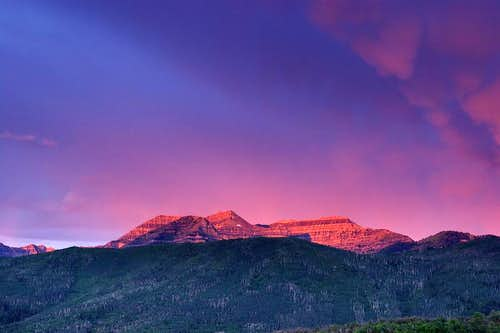 Glowing Timp