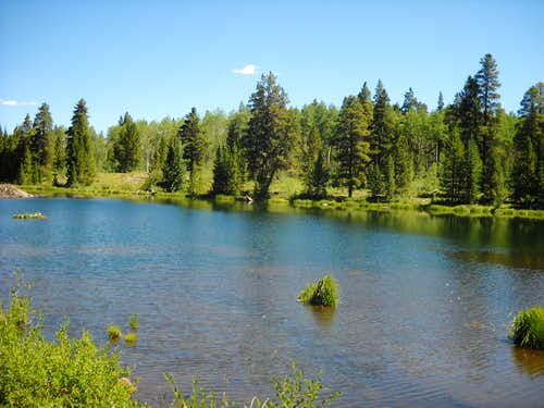 Pond by South Elbert Trail
