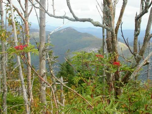 A view of Dial Mountain from...