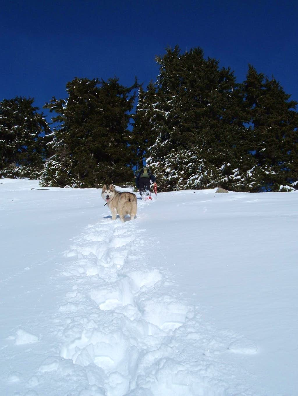 Climbing open slopes