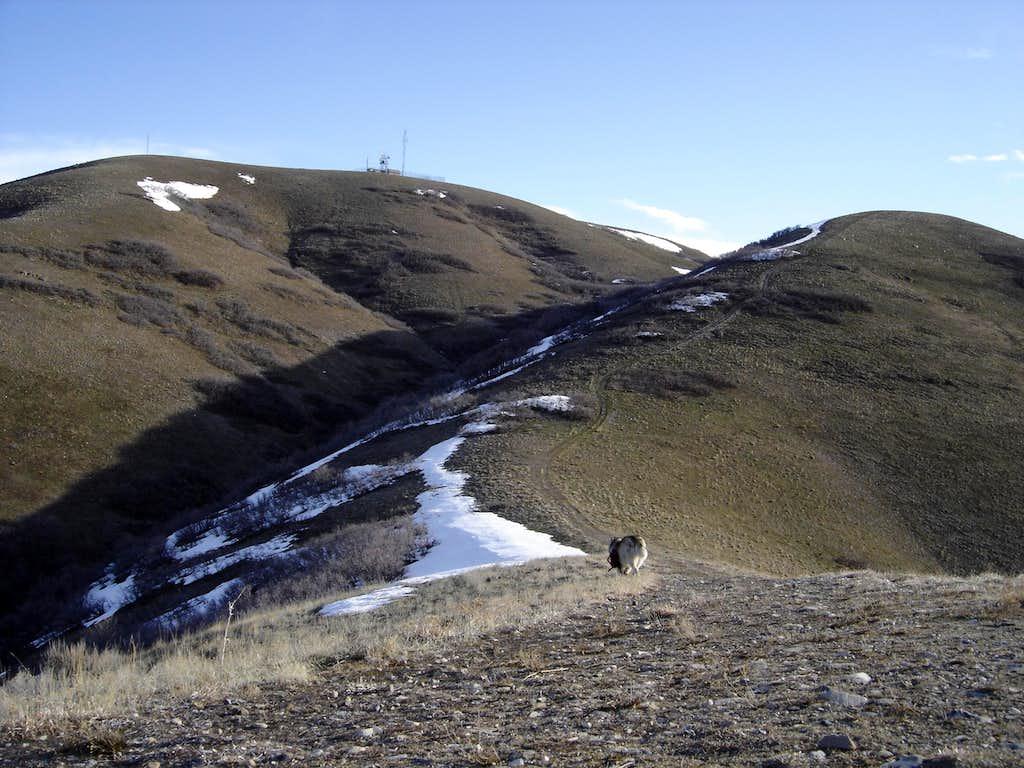 Lower Ridge