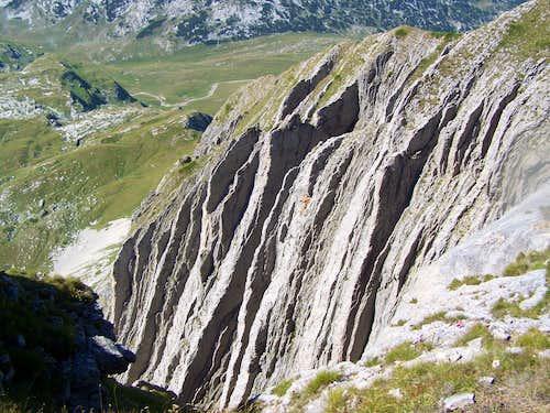 The incredible Prutaš
