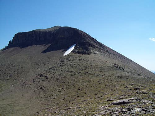 Piegan Mountain from the Saddle