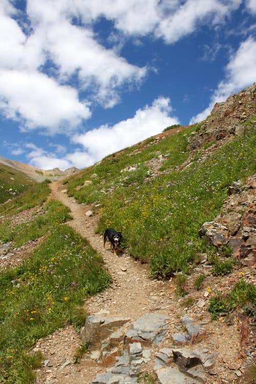 Trail to Wright\'s Lake