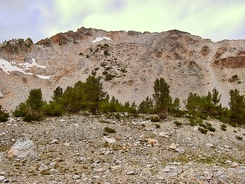 Mt Limbert- East Slopes