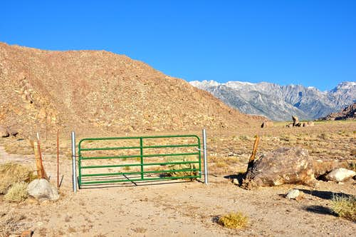 Locked gate and cattle fence