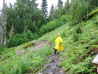 Trail #710