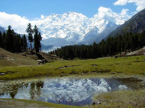 Nanga Parbat as seen from Fairy Meadows