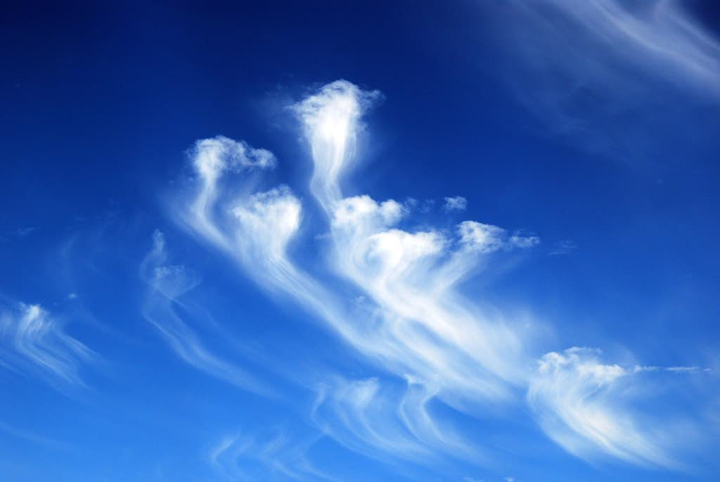 Jelly-fish shaped clouds in the sea of sky