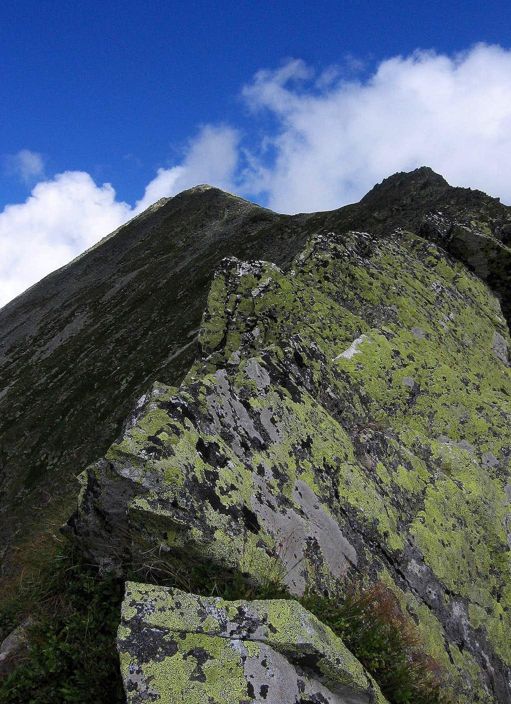 Detail from Porţile Închise (Closed gates) and Vârful (Peak) Mare