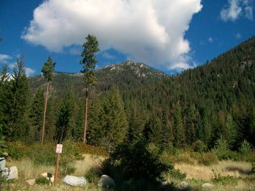 Looking up from the trailhead
