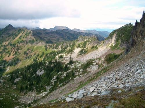 The scree field