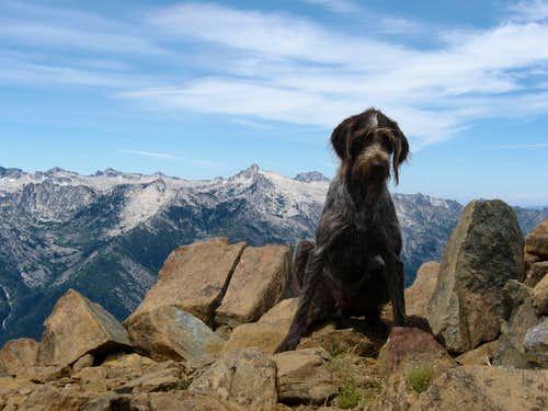 Cleetis on summit