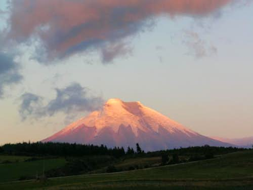 Evening alpenglow on Cotopaxi...