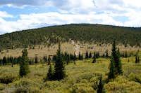 North Slopes of Montana Mountain