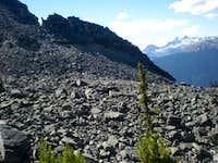 Endless boulder fields