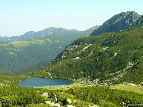 Lacul Lia