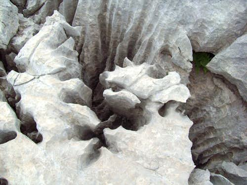 Carst formations on Arapit