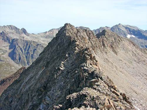 La Paul and Bardamina