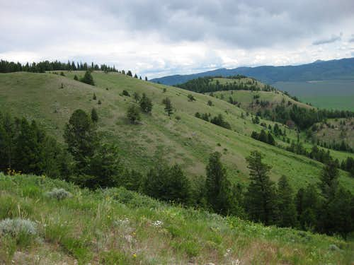 Slopes on Blacktail Butte