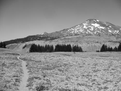 South Sister from Wickiup Plain