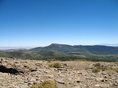 Mt. Hilgard to the east