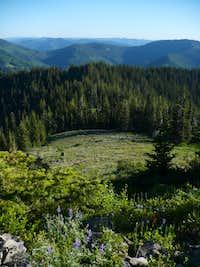 Horsepasture Mountain Meadow