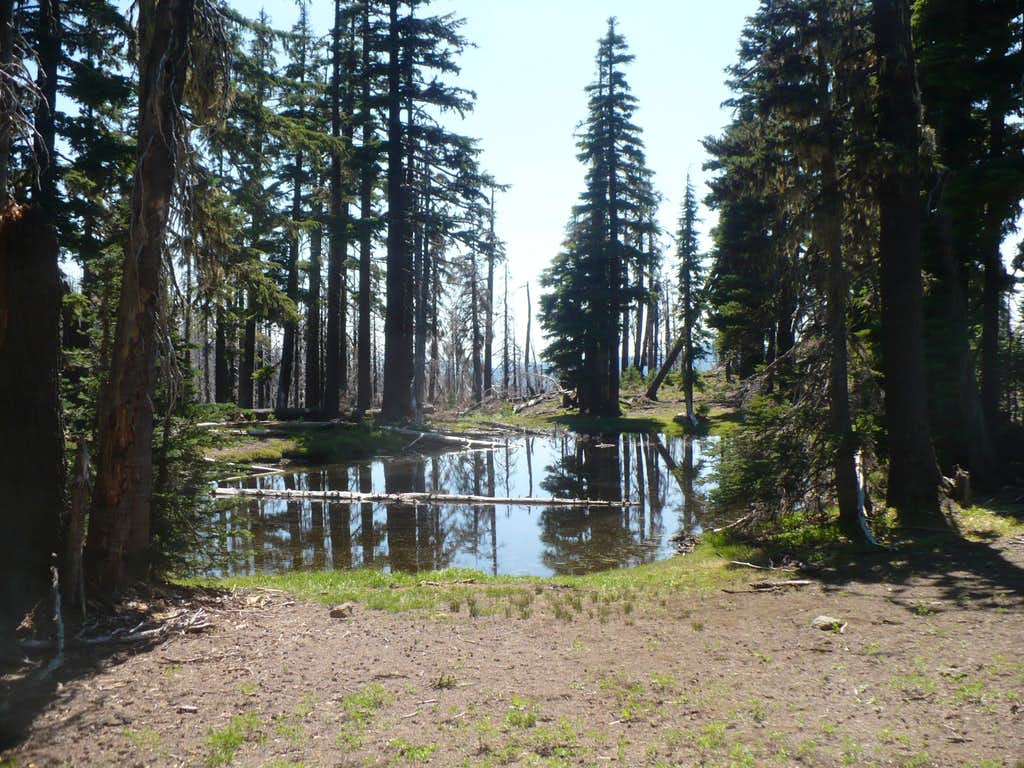 Washington Ponds