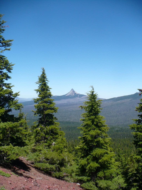 Mt. Washington from Scott Mountain