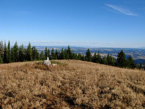 Saddle Butte View