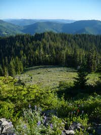 Meadow on Horsepasture Mountain